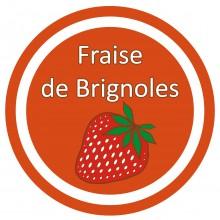 Conception graphique de l'étiquette du parfum Fraise des biscuits Saint Louis de Lafitau